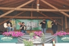 20090620_greenfarm_band.jpg