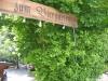 indersdorf_zum_biergarten.jpg