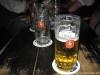 storch_glaseser_im-wbh