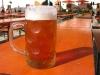 2009_hopfazupfa_bier.jpg