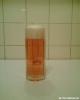 gans-bier.jpg